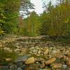 Rocky Branch River 2.