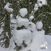 Snow people.