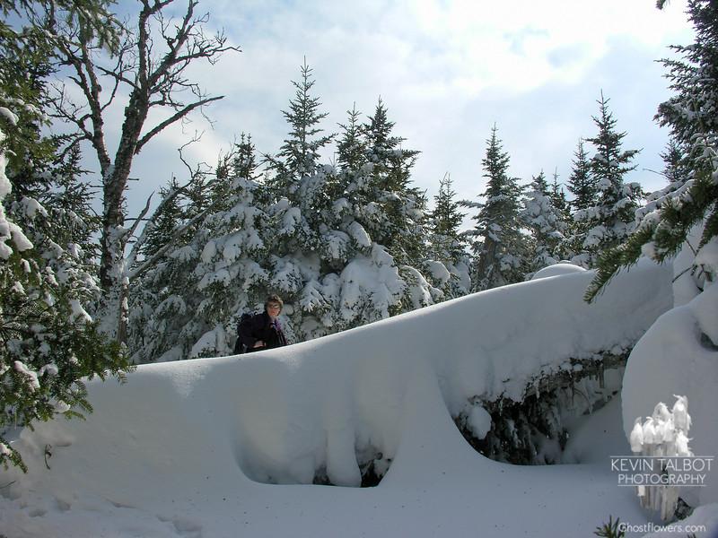 Jude behind a fallen tree.