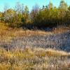 Frosty fields horizontal.
