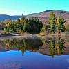 Mount Hale from wildlife pond.