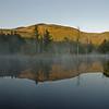 Beaver Pond 1.