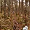 Along the Lend-A-Hand Trail 4.
