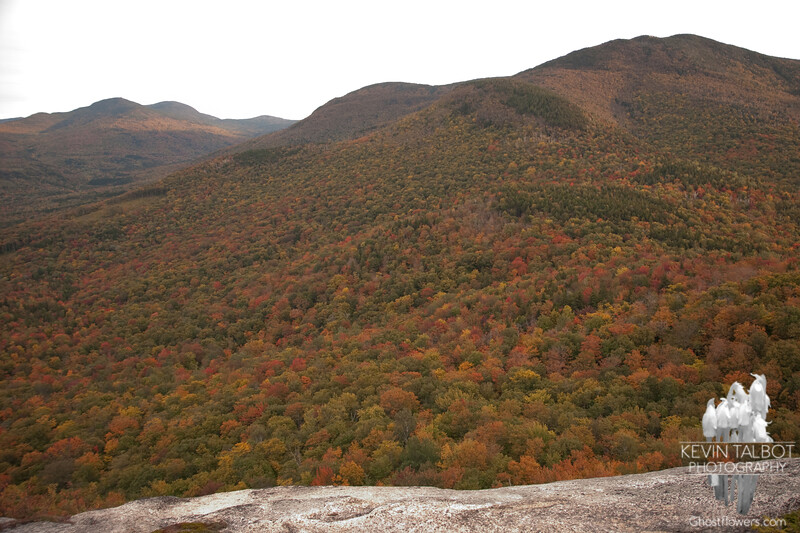 View towards Mount Hale.