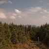 Hale Brook Trail.