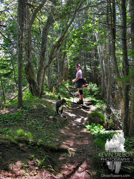 On Scaur Ridge.