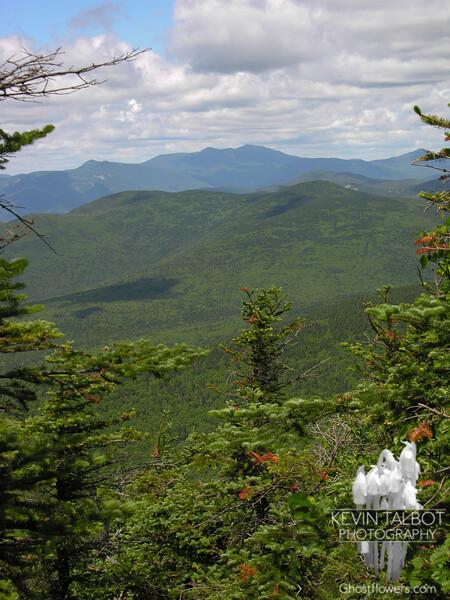 Franconia Ridge as seen from North Tripyramid.