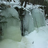 Ice bulges along the North Twin Trail.