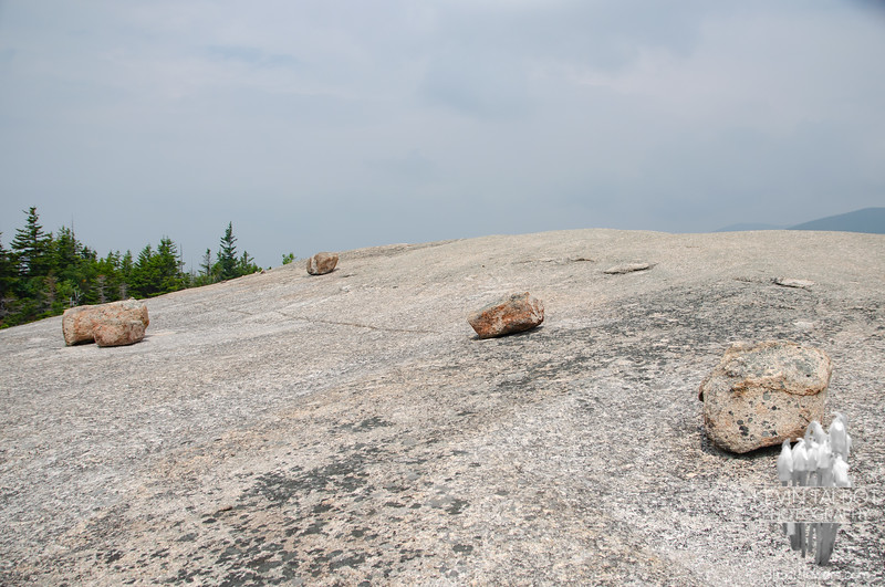 On Dickey's northeast summit for 2nd lunch...