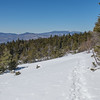 View of Mount Moosilauke from ledges on Dickey Mountain.