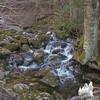 Feeder brook along the Nineteen Mile Brook Trail.