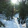 Sunlit trail.