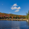 Zealand Pond