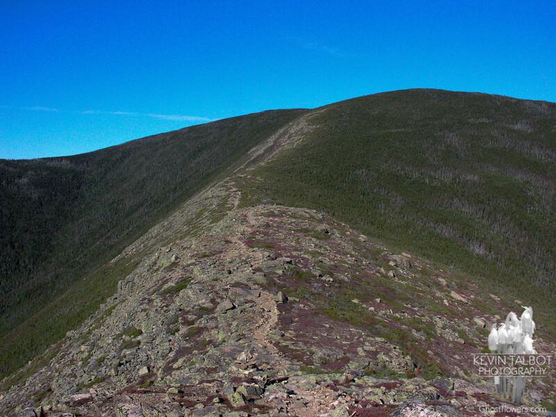 Mount Bond from Bondcliff.