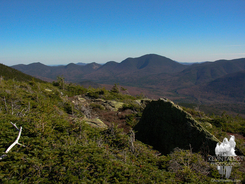 View to Mount Carrigain from Bondcliff Trail.