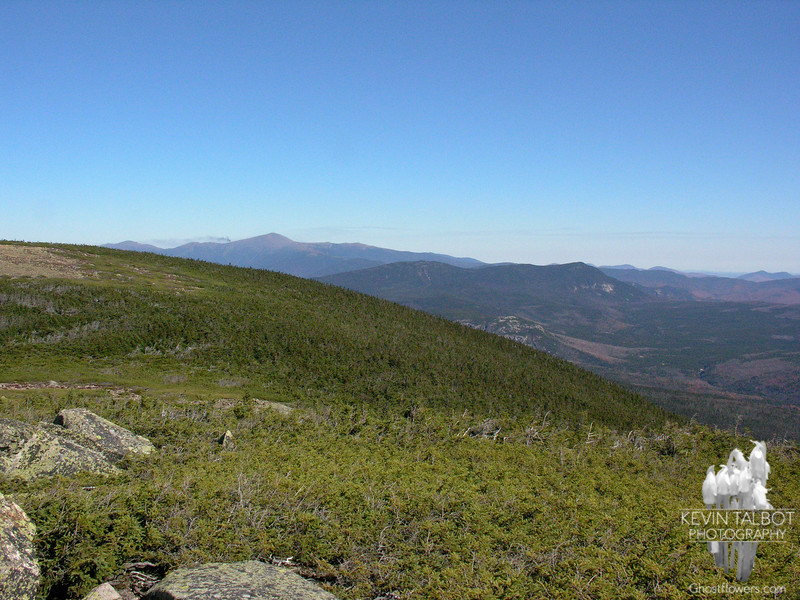View northeast to the Willey Range and beyond to the Presidentials from Mount Guyot.