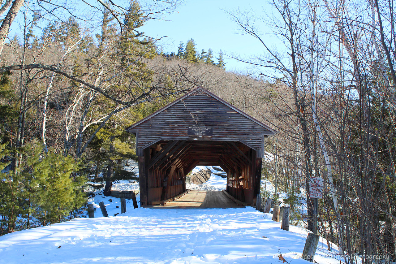The Albany Covered Bridge