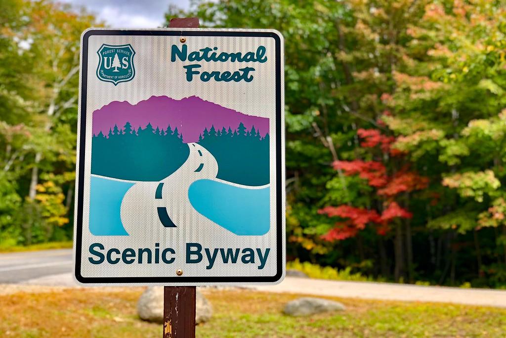 New England fall foliage drives