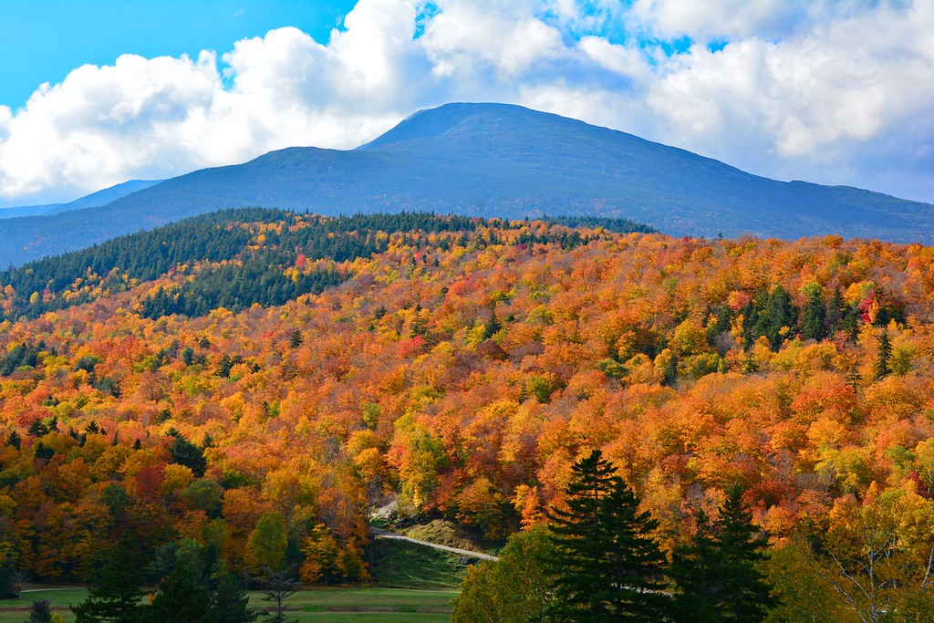 New England Fall foliage drives