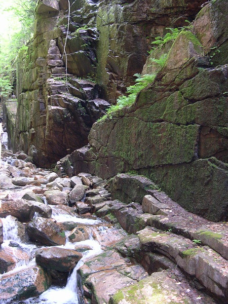 The Flume Gorge  Franconia, NH