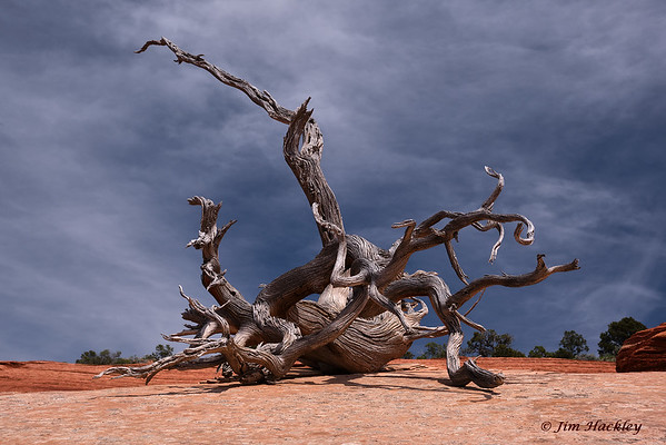 Plateau Sculpture