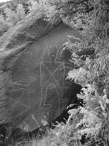 One of many in the petroglyph wall.