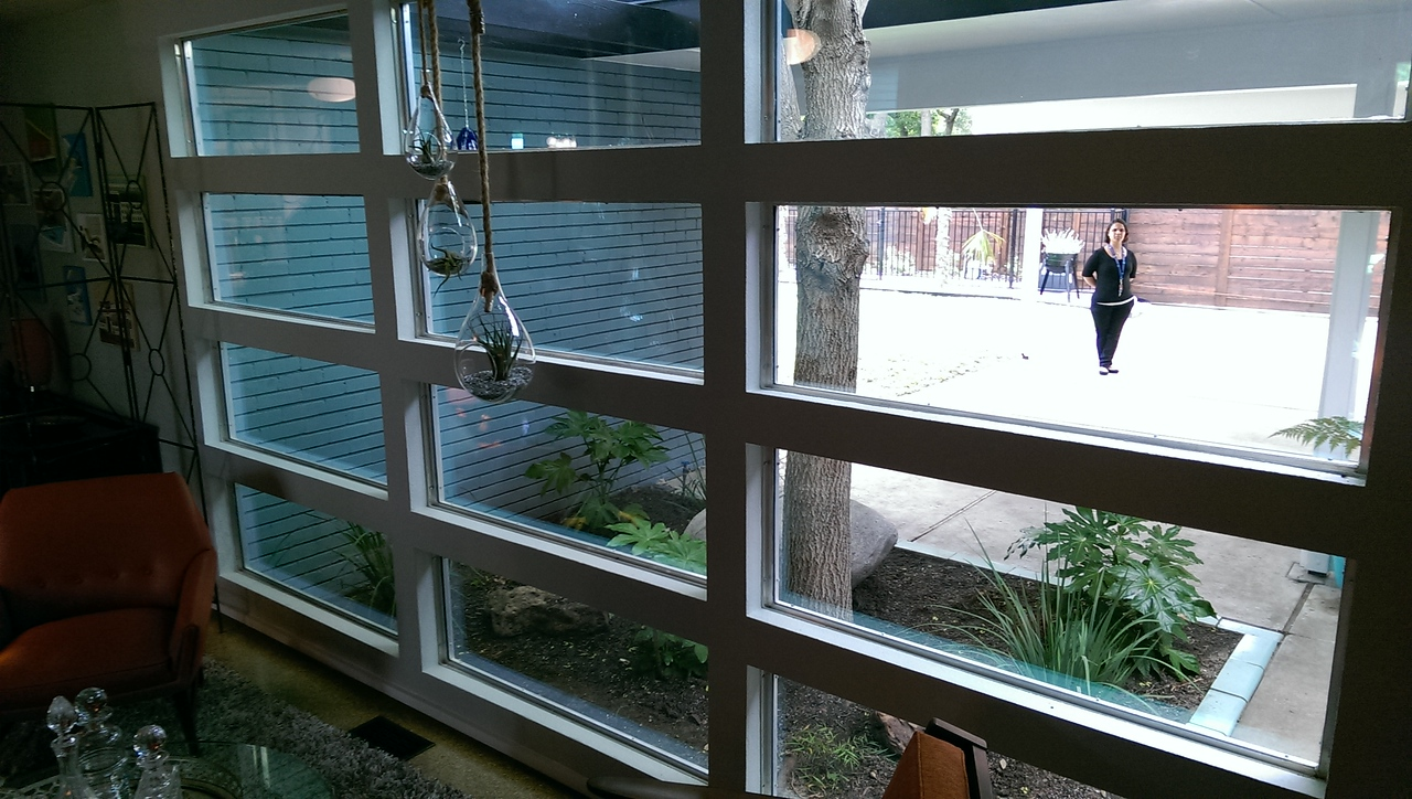 11030 Cactus Lane - cool hanging terrariums