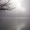Fog Glow