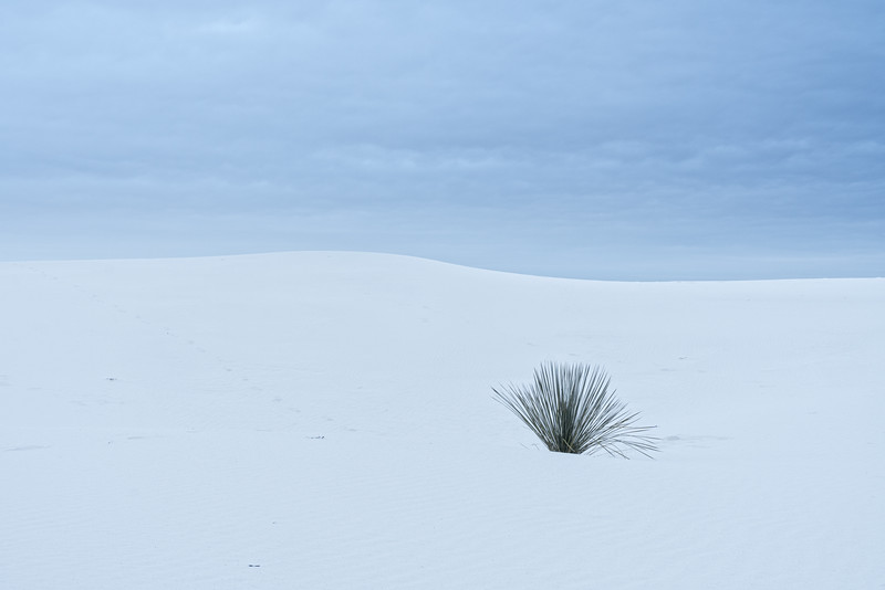 White Sands in winter