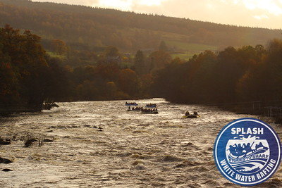 stag, rafting, scotland,  http://www.rafting.co.uk,