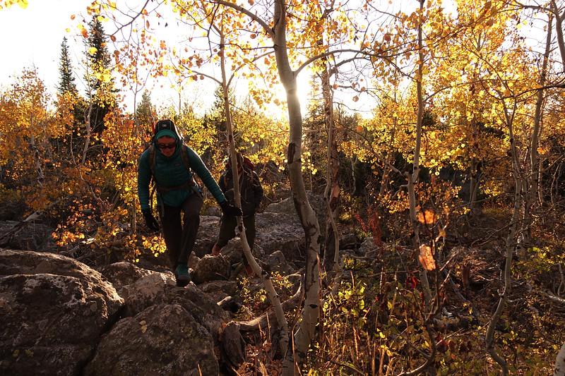 Autumn colors below Teewinot