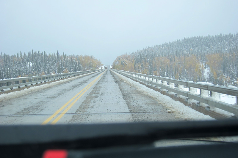 Along the ALCAN between Tok and Delta Junction AK.