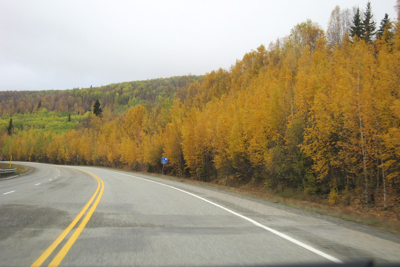 On the Richardson Highway (or ALCAN if you believe it doesn't stop  in Delta Junction) between Delta and Fairbanks.