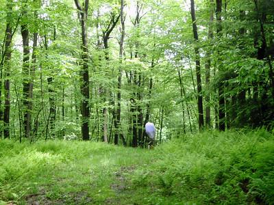 2009-05-28 Fike Run