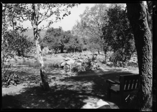 Canyon from estate #17 water garden shots, Southern California, 1928