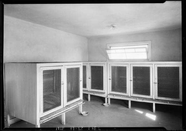 Dr. Scott's Dog Hospital, Beverly Hills, CA, 1925