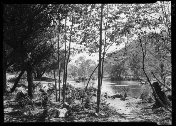 Canyon from estate #17 water garden shots, Southern California, 1928