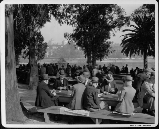 A large group of men gathered in Westlake Park, with old men playing cards in the foreground