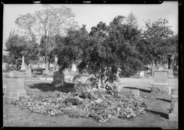 Flowers on Bradley grave at Rosedale, Los Angeles, CA, 1931