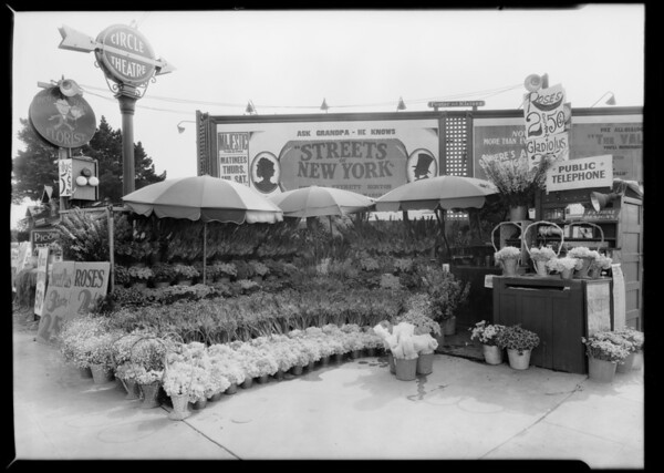 Flower shop, South Western Avenue and West Pico Boulevard, Los Angeles, CA, 1929