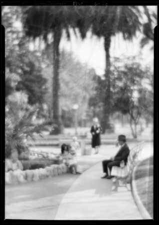 View in St. James Park, Los Angeles, CA, 1928