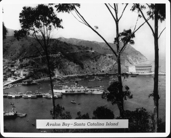 A view across Avalon Bay on Santa Catalina Island