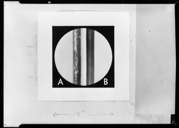 Photomicrograph of hair washed with soap & Glo Co, Southern California, 1931