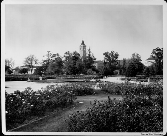 A view of the flower garden and pond within Exposition Park with the Mudd Hall of Philosophy of the University of Southern California (USC) in the background
