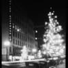 Christmas tree at night in street, South Flower Street, Los Angeles, CA, 1928
