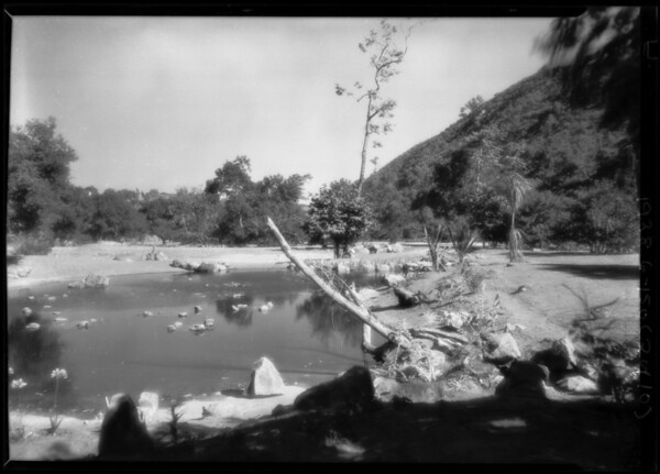Fire Chief Scott & views of water ponds & new greenhouse, Southern California, 1928