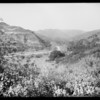 New views of canyon including group of women from Pasadena, Southern California, 1928