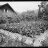 Gardens at 7218 Hillside Avenue, Lovell Swisher Jr., Los Angeles, CA, 1928