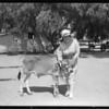 Mrs. Bain & calf, La Lomita Rancho, Southern California, 1927