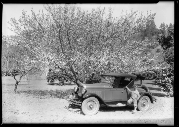 Chevrolet at botanic garden, Southern California, 1928